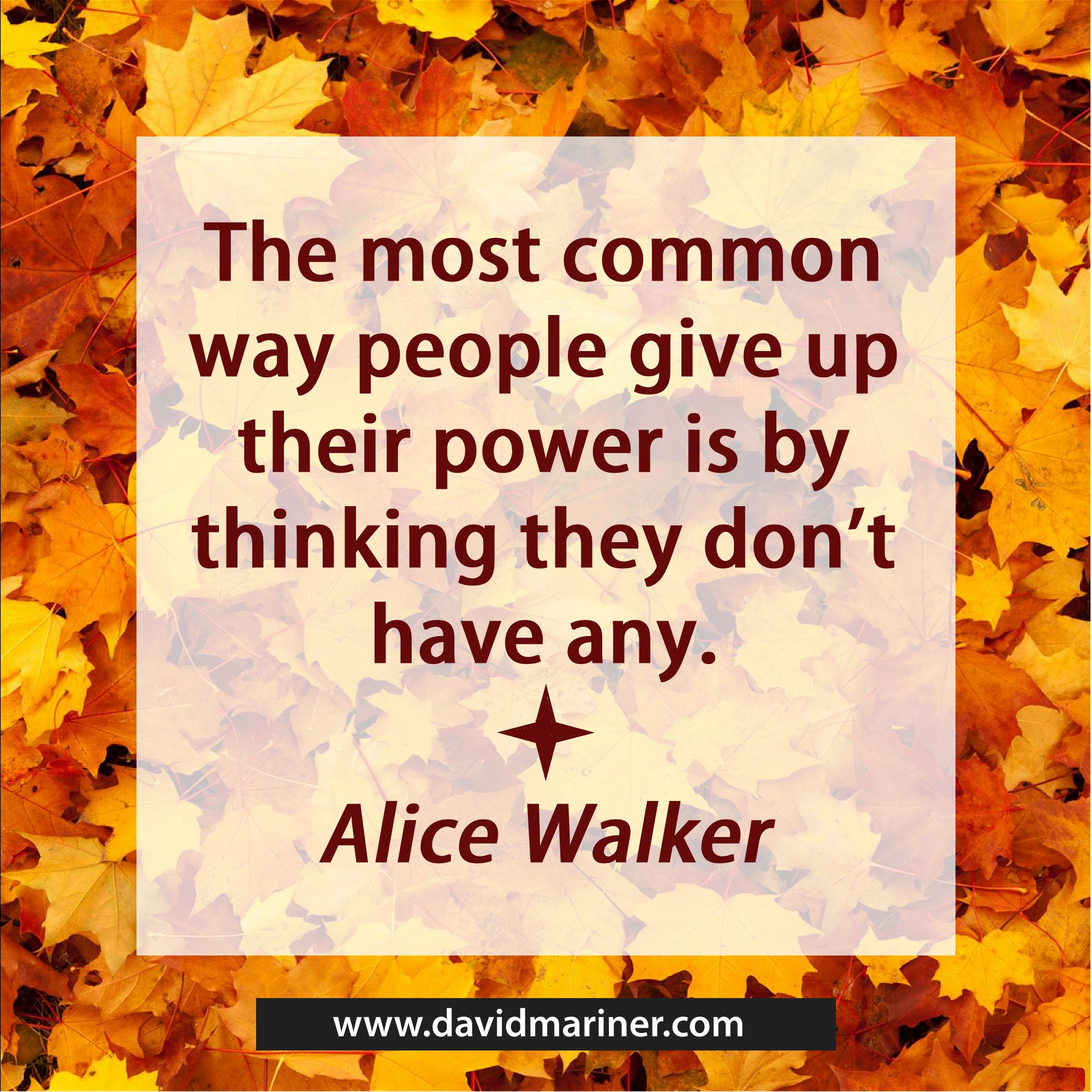 The most common way people give up their power is by thinking they don't have any. -Alice Walker