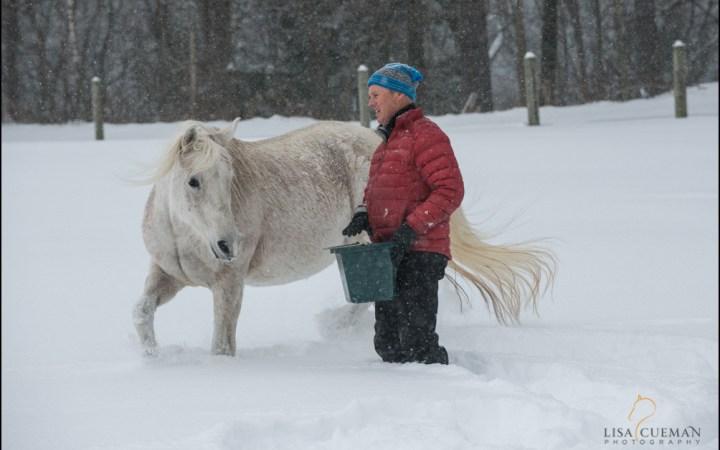 Pro Photographer & Horse Handler