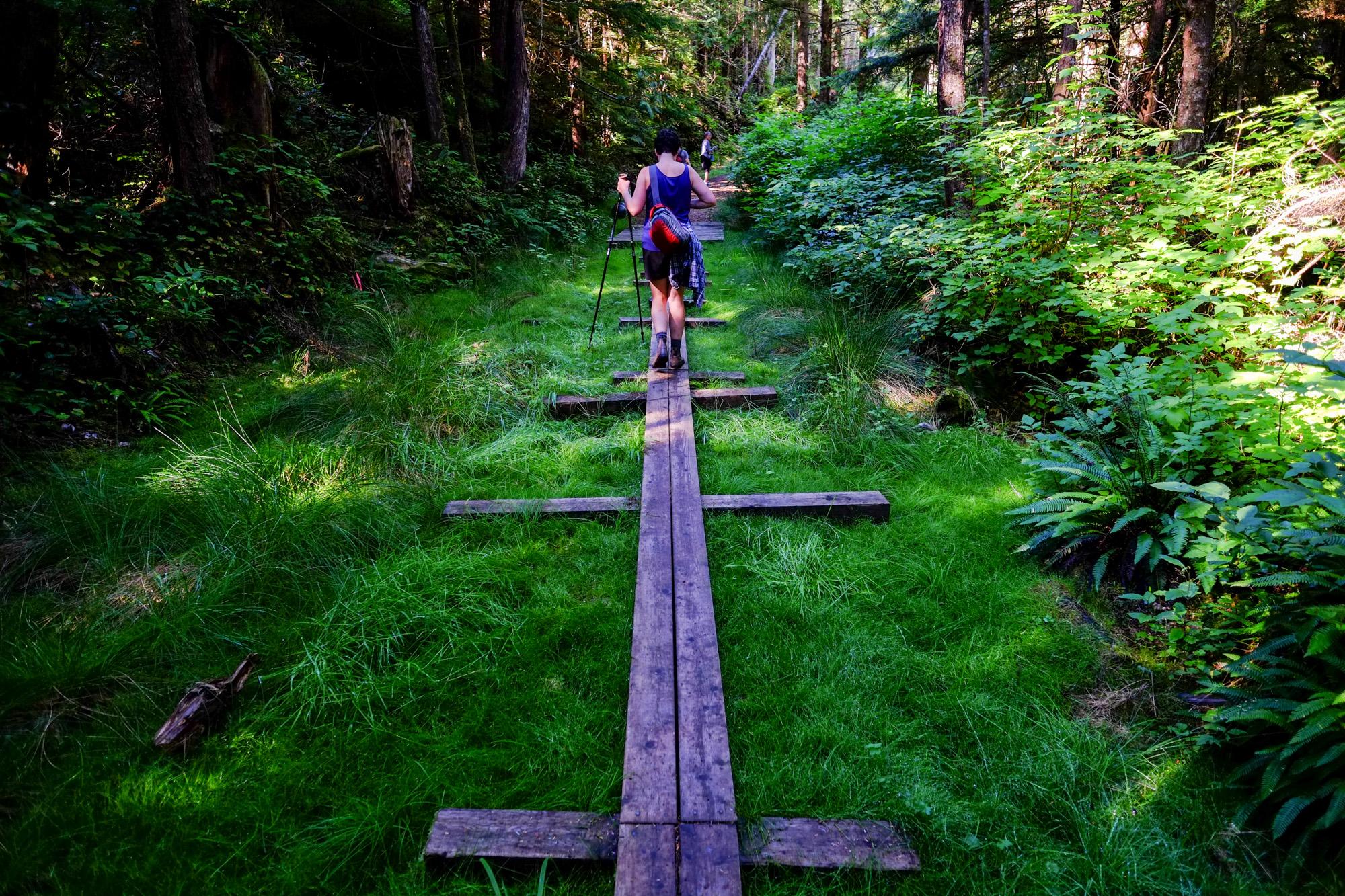 Hikers walk along a boardwalk in Cape Scott Provincial Park.