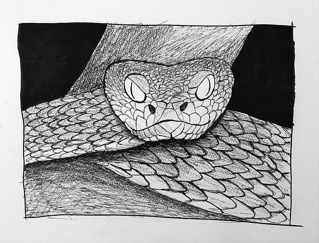 Snake (Inktober 52 – Week 4)