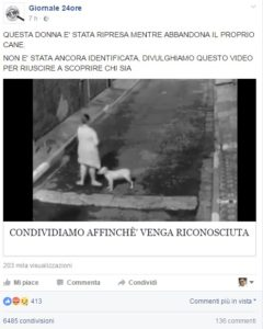 giornale-24-ore-donna-abbandona-cane