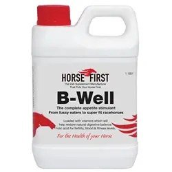 HORSE FIRST B WELL 1L-0