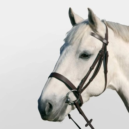 JHL BROWN PLAIN CAVESSON BRIDLE-0