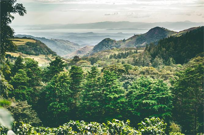 Costarica – Monteverde [David Surý]