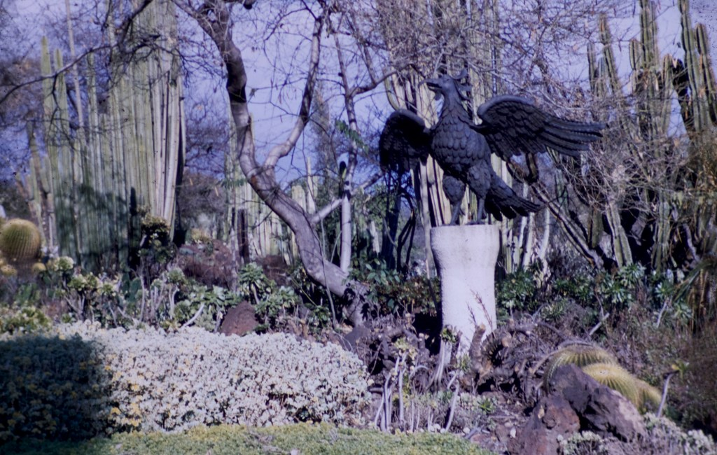 Huntington Library and Art Gallery – Cacti Garden