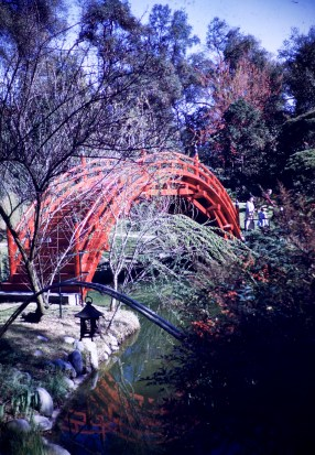 Huntington Library and Art Gallery - Oriental Garden