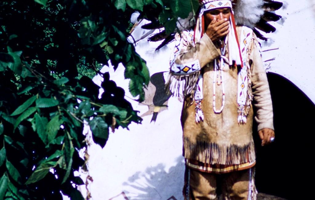 Minnesota – Indian Chief