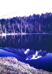 Mount Rainier - Reflection in lake
