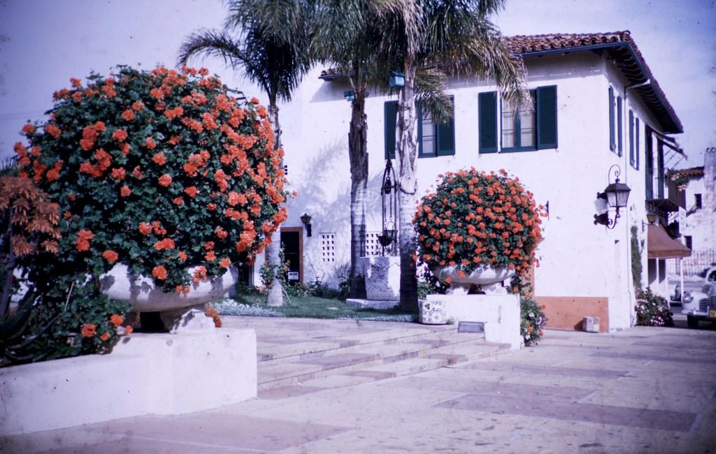 Santa Barbara – Geraniums – El Presidio