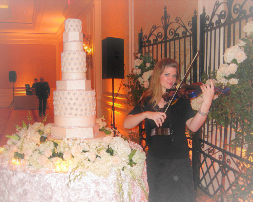 Wedding Cake and Violin