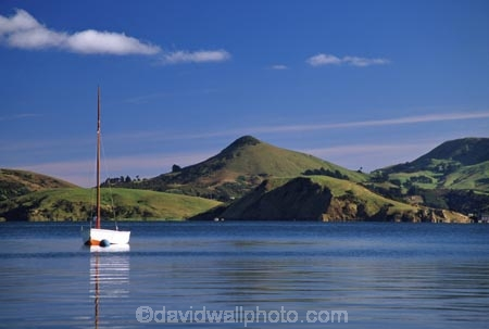 Yacht Dowling Bay Otago Harbour Harbour Cone And Otago