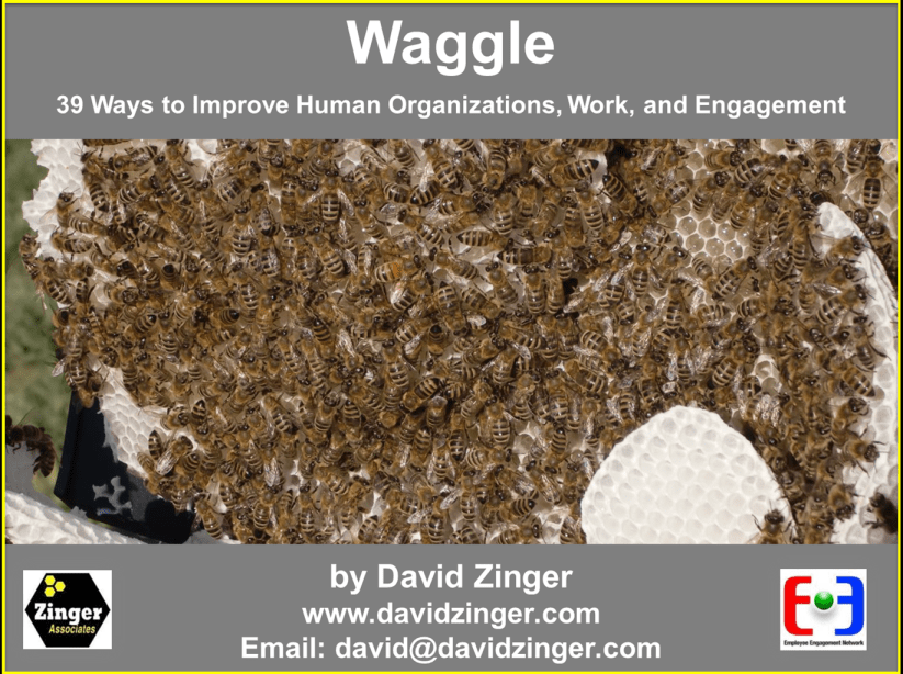 Waggle Book New Cover Promotion