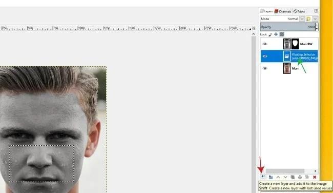 Plutajući sloj odabira GIMP grafika na licu