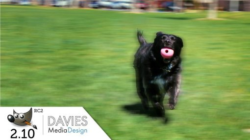 GIMP 2.10 (RC2) Tutorial: Add Motion Blur to Action Photos