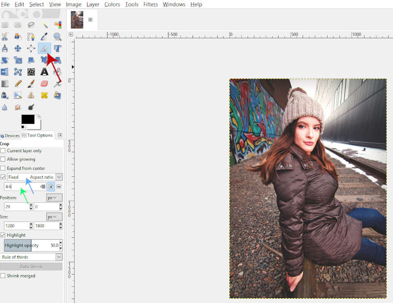 Crop Tool Tool Options White Border GIMP 2.10 Tutorial