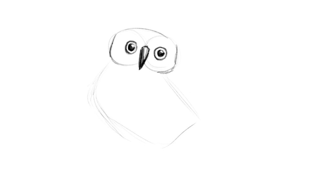How to draw an owl lesson tutorial for beginners