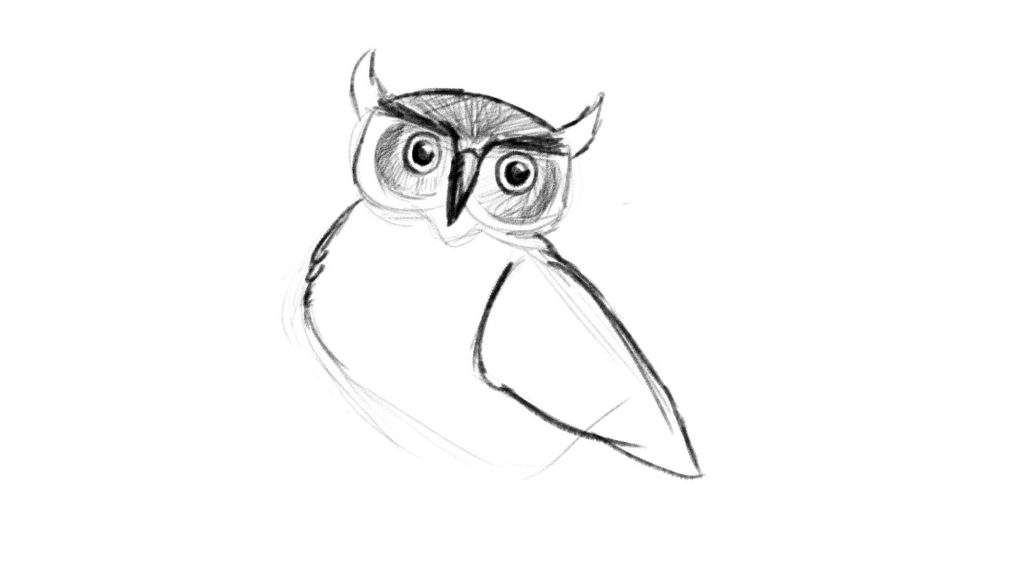 Drawing wings for your bird or owl