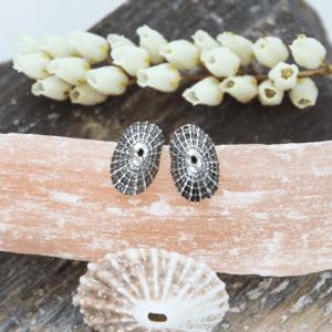 DaVine Jewelry, Silver Limpet Shell Stud Earrings