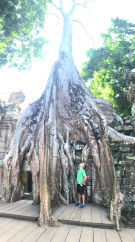 day-10-ta-prohm2