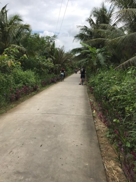 day-3-cycling-on-ribbon-of-concrete-coconut-kingdom1