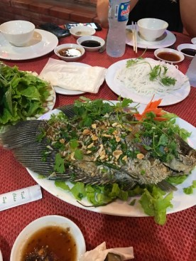 day-3-vietnamese-peking-duck-fish1
