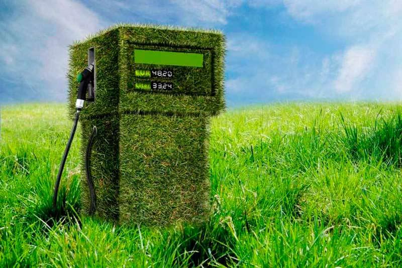 Los biocombustibles energía derivada de materia orgánica