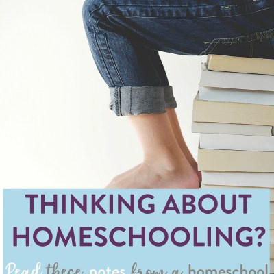 Curious about homeschooling? I spill the beans about my own story in this post…