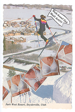 skier_with_peaks_web_reduced
