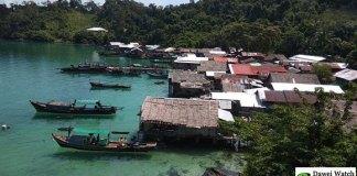 လငန်းကျွန်းရှိဆလုံအိမ်များ