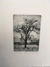 """""""Hilltree"""" original etching by George Raab"""