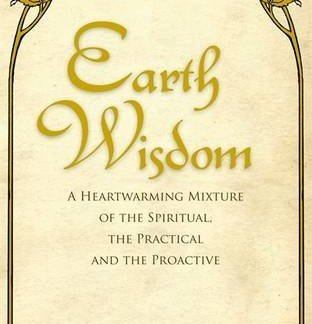 Earth Wisdom A Heartwarming Mixture of the Spiritual, the Practical and the Proactive Paperback 14 Nov 2011