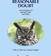 beyond reasonable doubt paperback book trevor davey