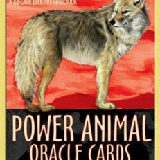 POWER ANIMAL ORACLE CARDS BY STEVEN FARMER