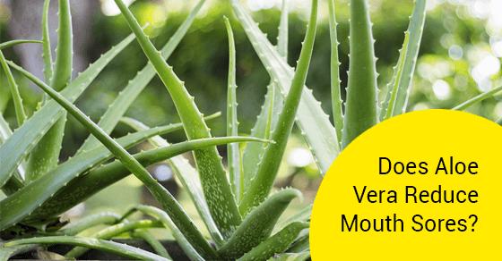 Does Aloe Vera Reduce Mouth Sores?
