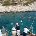 Variety Cruises Swim Stop
