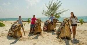 Camel Safari in Maroma Beach