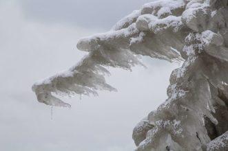 The Ice Dragon, Ashbridges Bay