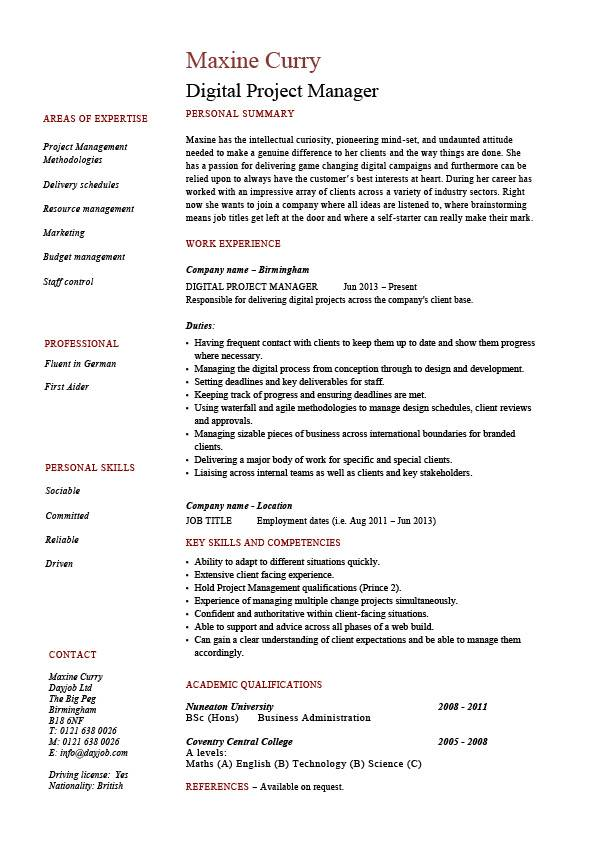 Digital Project Manager Resume Example