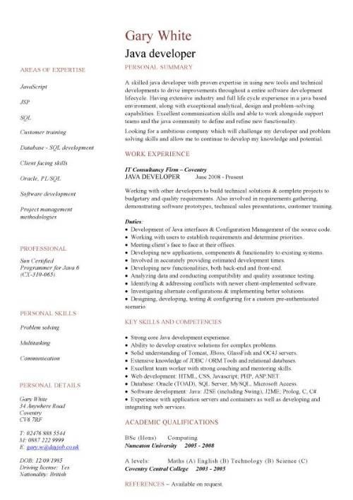 Java Developer CV Sample JavaScript Job Description CV Examples Interface