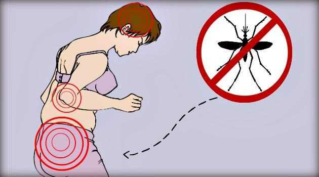 Não estou grávida, o que pode acontecer se eu pegar zika vírus? Entenda riscos