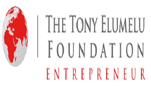 tony elumelu foundation alumni badge