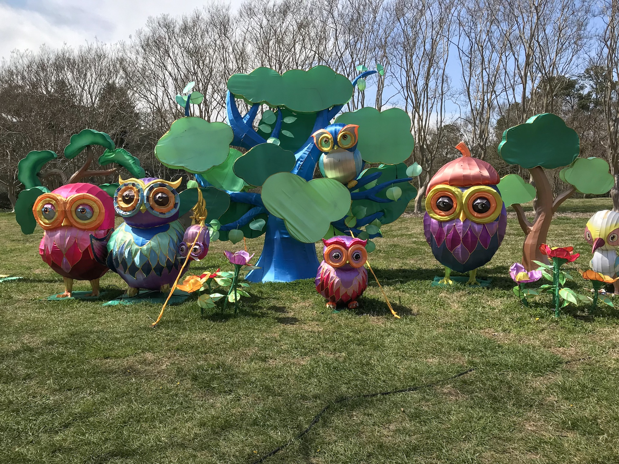 Lantern Asia in Norfolk Botanical Gardens - Days Filled With Joy