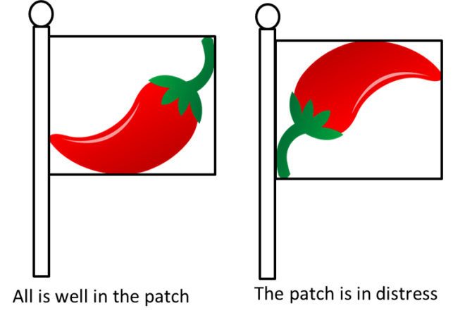 Rick's Pepper Patch Flag