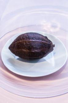 muzej-cokolade-zagreb (94)
