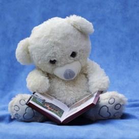 photograph of teddy bear reading