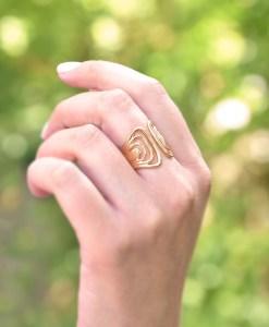 Fan Ring