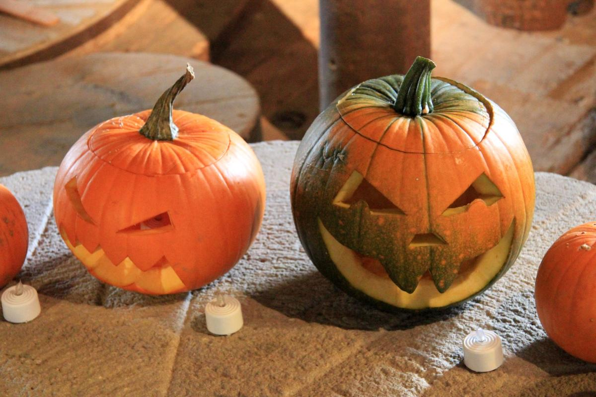 This is an image of Priceless Pumpkin Design Free