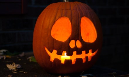 Free Online Pumpkin Carving Template Stencils Designs and Patterns