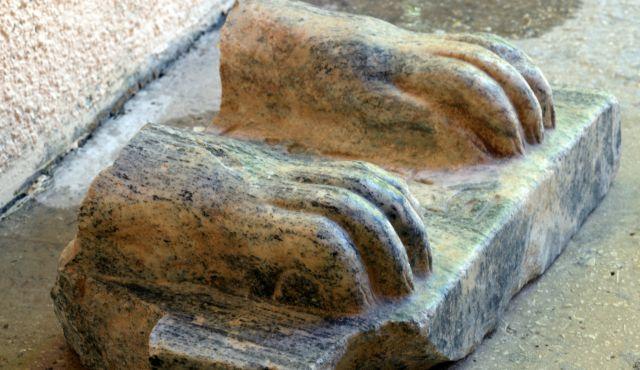 Egyptian Sphinx Found In Israel, Hieroglyphs Amaze Archaeologists