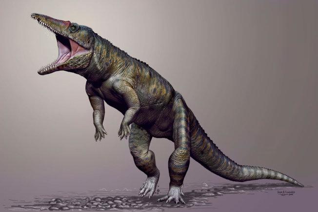 Carolina Butcher:  Meet The Croc That Hunted On Two Legs